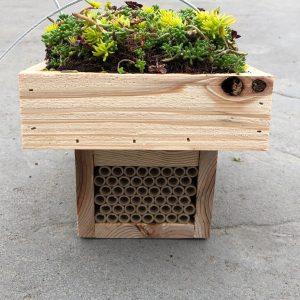 Eco Nester ~ Living Roof Mason Bee House